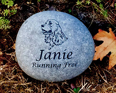 Cocker Spaniel Pet Memorial