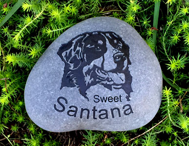 Bernes Mountain Dog Pet Memorial
