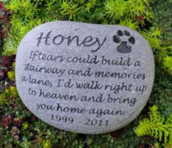 Rainbow Bridge Pet Memorial