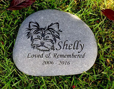 Silky Terrier Pet Memorial