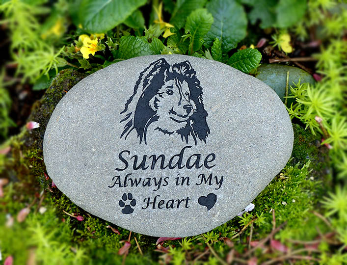 Shetland Sheep Dog Pet Memorial