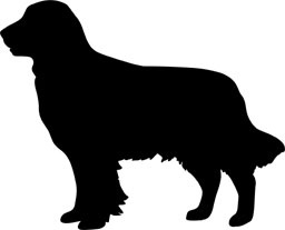 Golden Retriever Silhouette Whilst there are many variations in tone for. golden retriever silhouette